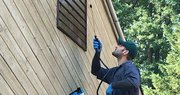 Best Services to Control Woodworm in Southend